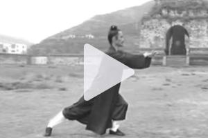 taiji-video